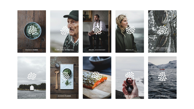 app-cards-web-2
